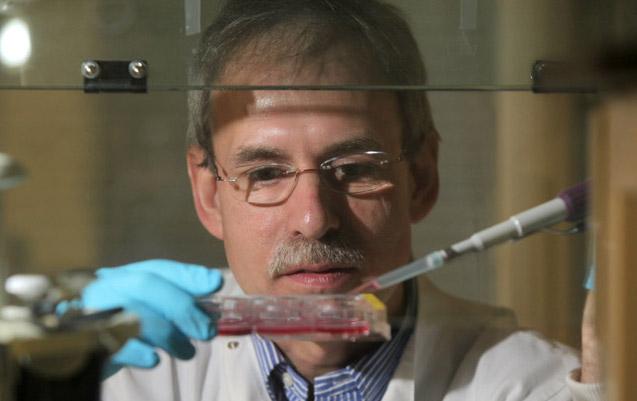 Breakthrough in understanding human skin cells
